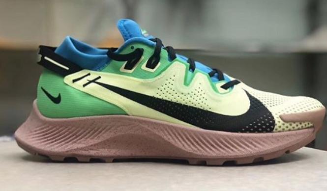 Nike Pegasus Trail 37 - Running