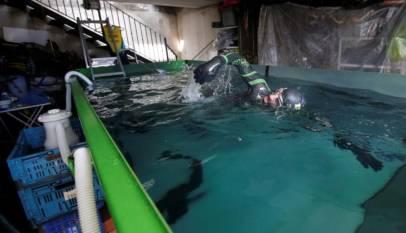 Nadando en un contenedor de obra