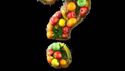 preguntas sobre nutrición